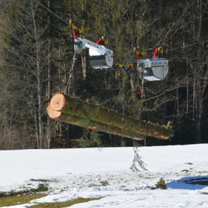 bs 1 20141218 1346502026 300x300 - Brülisauer Forstunternehmung AG