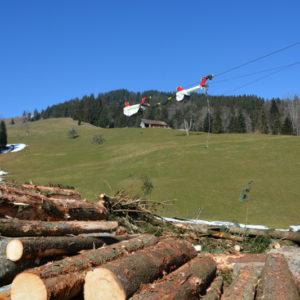 bs 4 20141218 1635995088 300x300 - Brülisauer Forstunternehmung AG